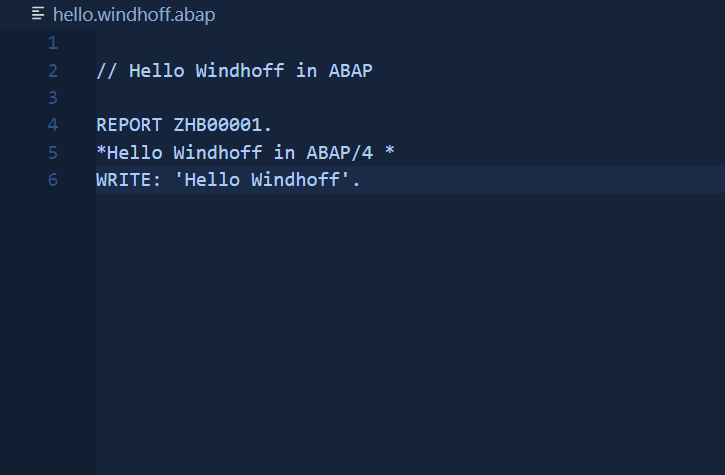windhoff-group-programmiersprache-abap