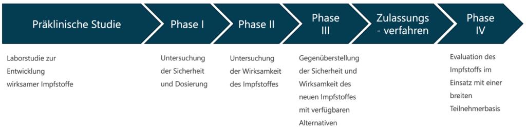 Phasen der Entwicklung