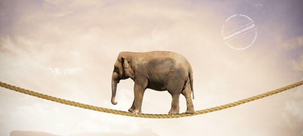 Bürokratie im Unternehmen: Aus einer Mücke keinen Elefanten machen